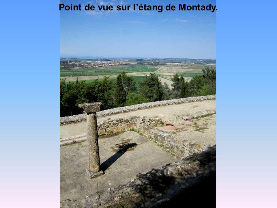 Point de vue sur l'étang de Montady.