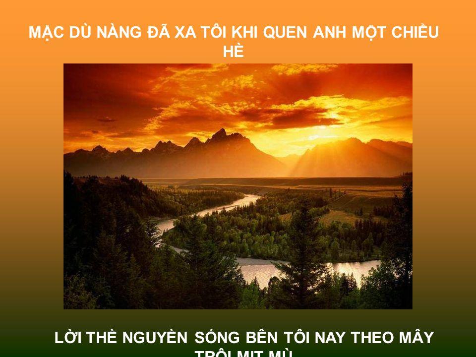MẶC DÙ NÀNG ĐÃ XA TÔI KHI QUEN ANH MỘT CHIỀU HÈ