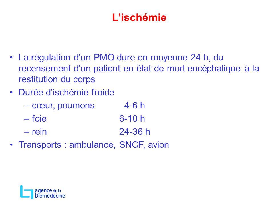 L'ischémie La régulation d'un PMO dure en moyenne 24 h, du recensement d'un patient en état de mort encéphalique à la restitution du corps.