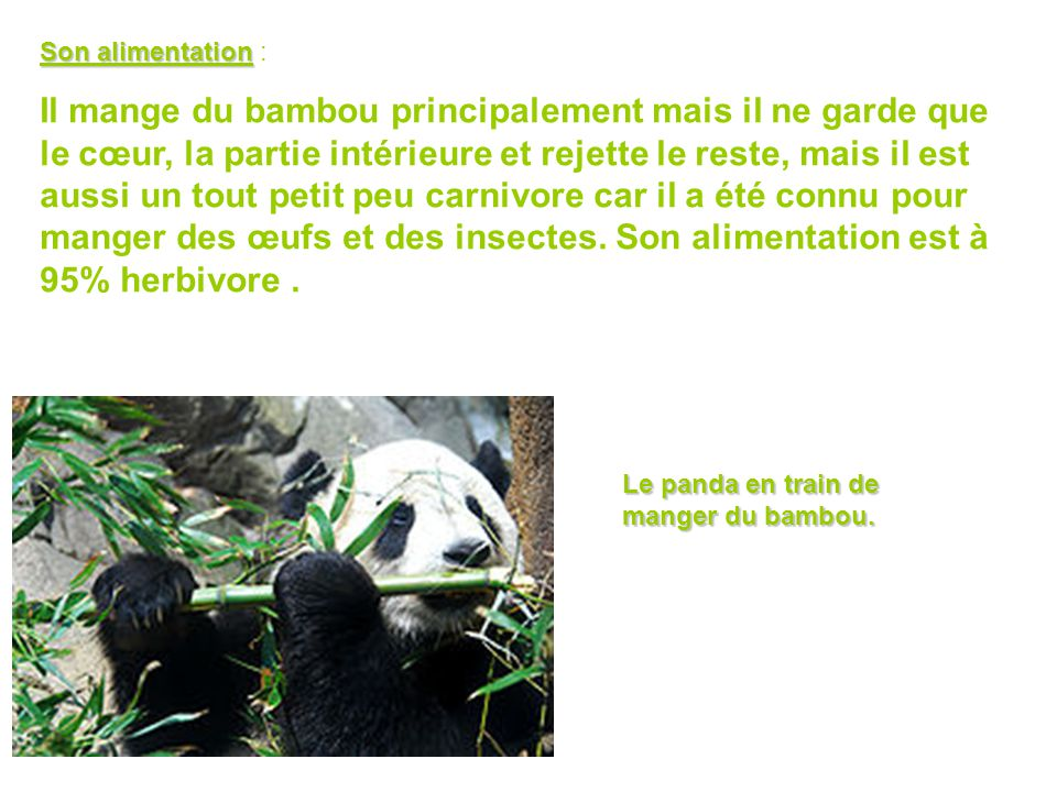 Son alimentation :