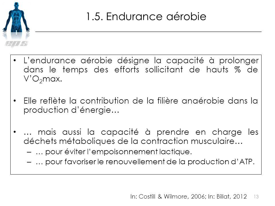 1.5. Endurance aérobie L'endurance aérobie désigne la capacité à prolonger dans le temps des efforts sollicitant de hauts % de V'O2max.