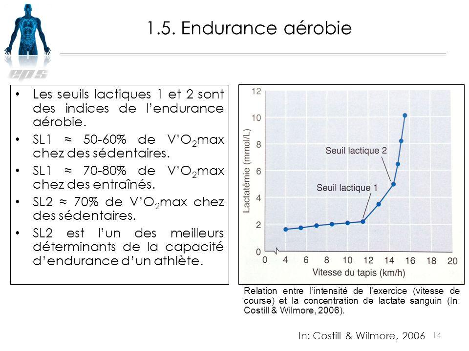 1.5. Endurance aérobie Les seuils lactiques 1 et 2 sont des indices de l'endurance aérobie. SL1 ≈ 50-60% de V'O2max chez des sédentaires.