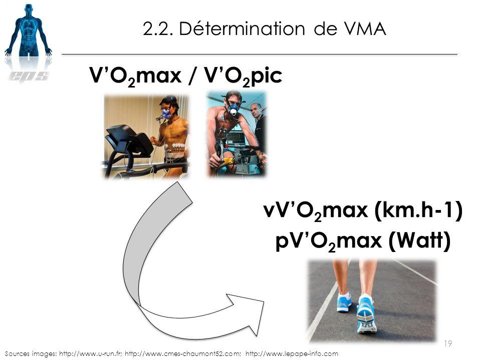 vV'O2max (km.h-1) pV'O2max (Watt)