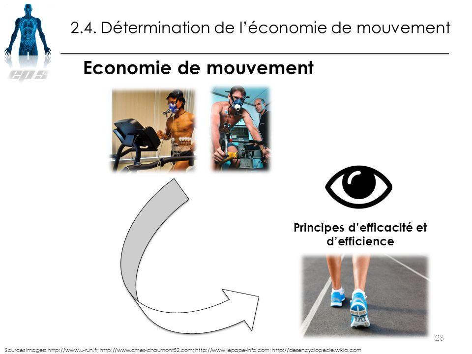 2.4. Détermination de l'économie de mouvement