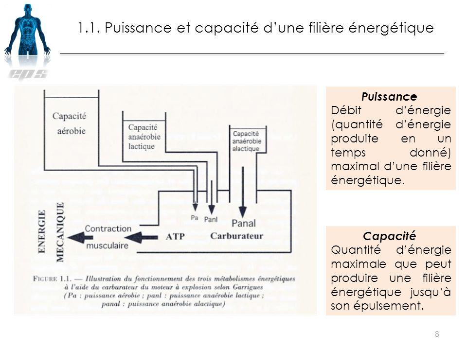 1.1. Puissance et capacité d'une filière énergétique