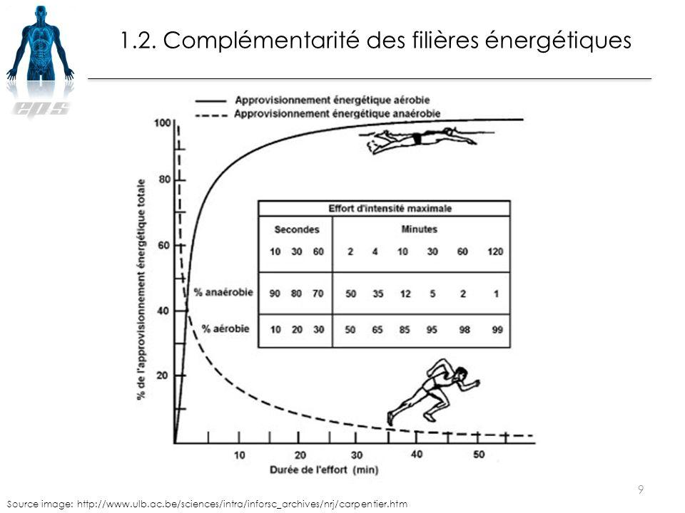 1.2. Complémentarité des filières énergétiques