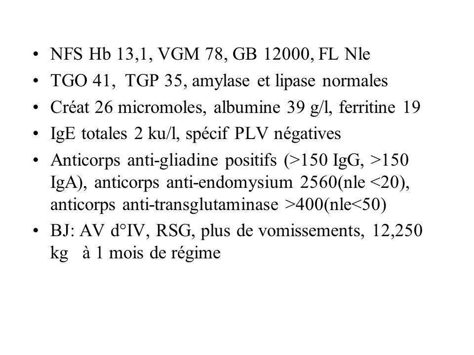 NFS Hb 13,1, VGM 78, GB 12000, FL Nle TGO 41, TGP 35, amylase et lipase normales. Créat 26 micromoles, albumine 39 g/l, ferritine 19.