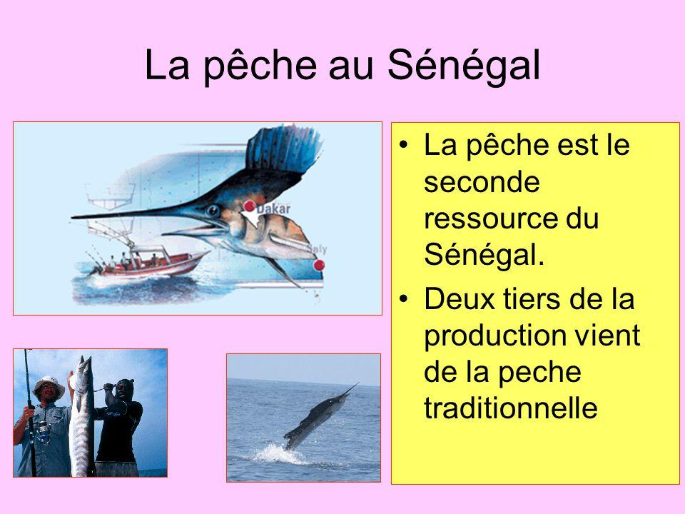 La pêche au Sénégal La pêche est le seconde ressource du Sénégal.