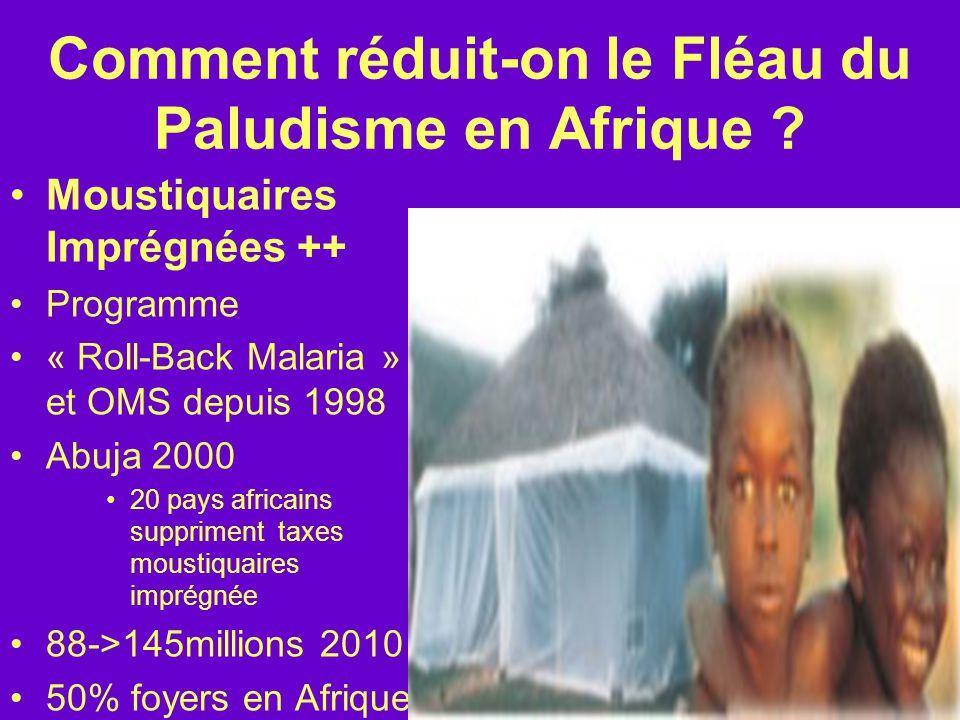 Comment réduit-on le Fléau du Paludisme en Afrique
