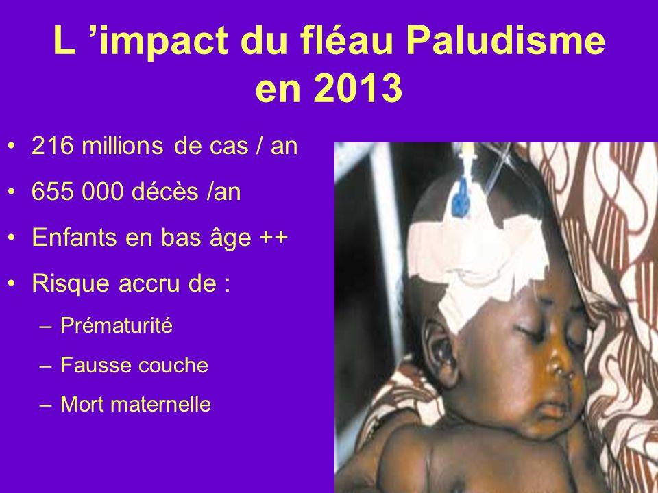 L 'impact du fléau Paludisme en 2013