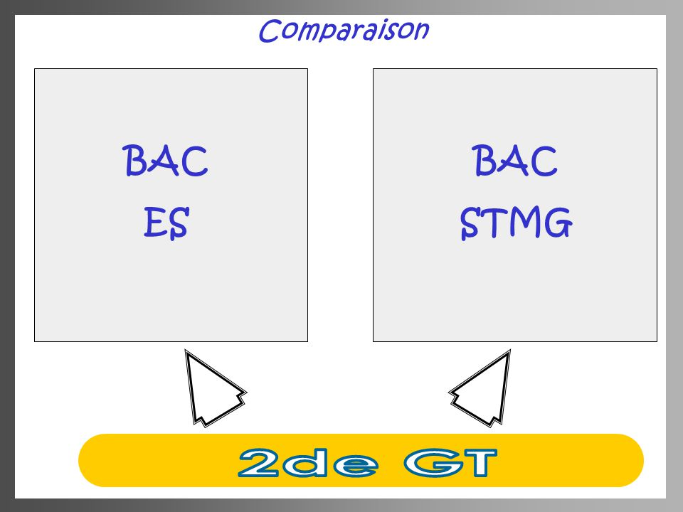 Comparaison BAC ES BAC STMG 2de GT
