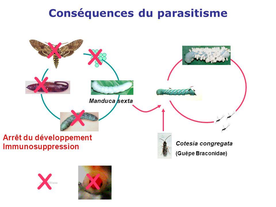 Conséquences du parasitisme