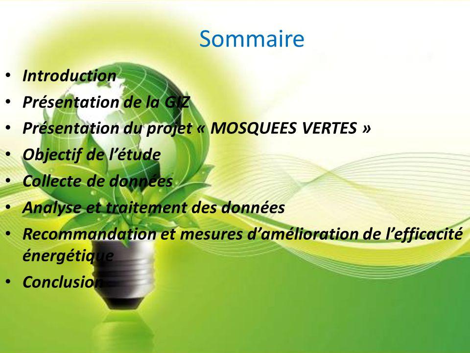 Sommaire Introduction Présentation de la GIZ