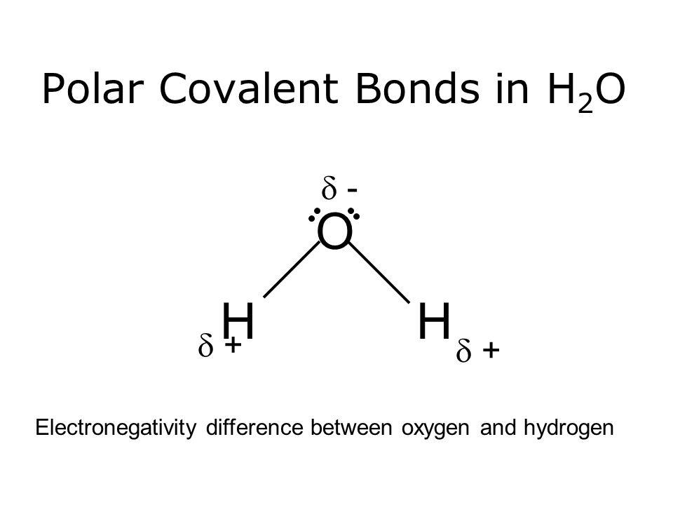 Polar Covalent Bonds in H2O