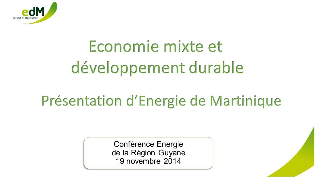 Conférence Energie de la Région Guyane 19 novembre 2014