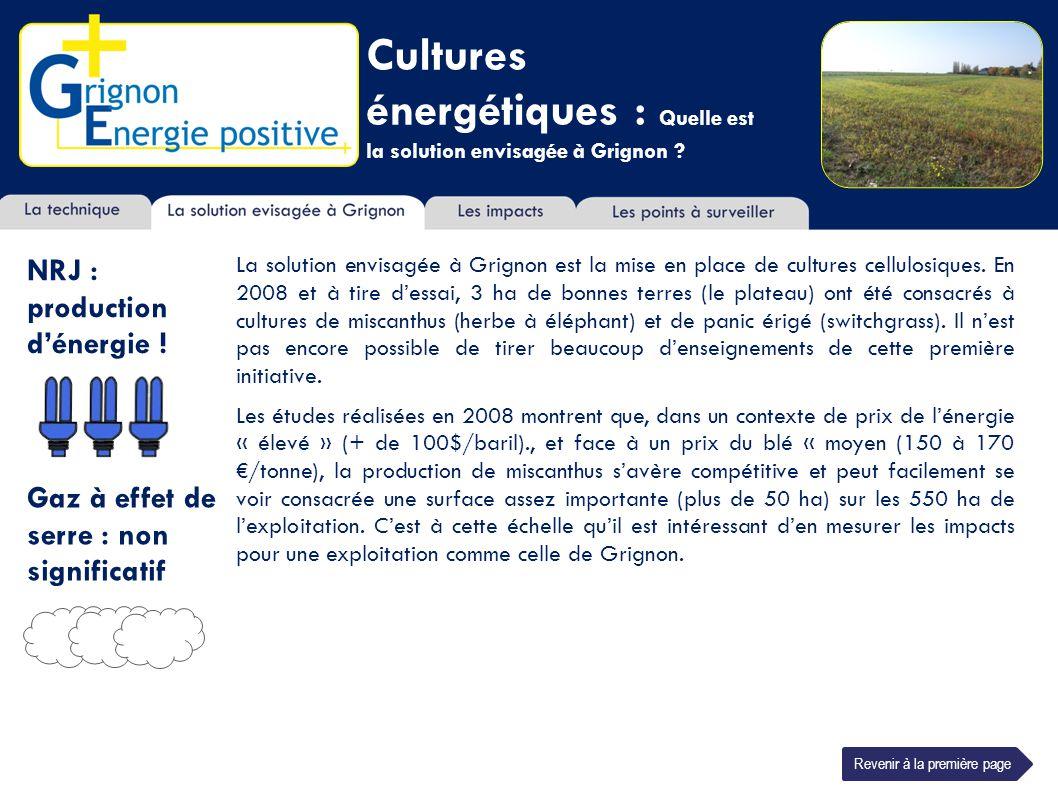 Cultures énergétiques : Quelle est la solution envisagée à Grignon