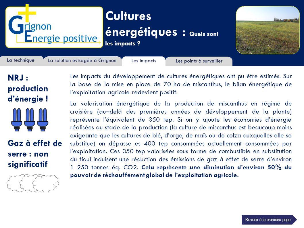 Cultures énergétiques : Quels sont les impacts