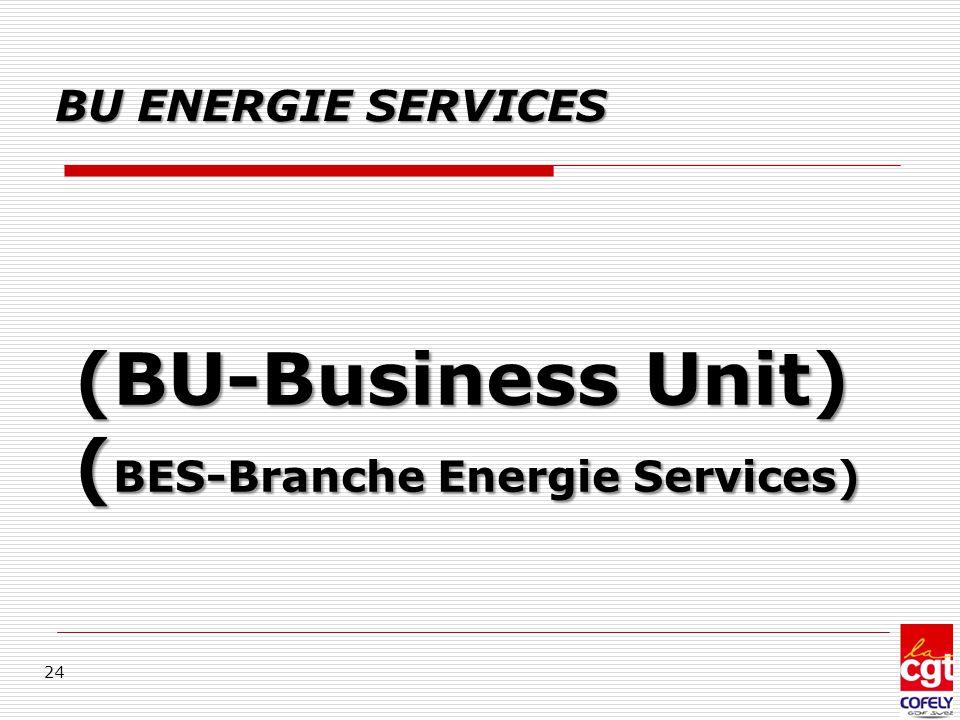 (BU-Business Unit) (BES-Branche Energie Services)