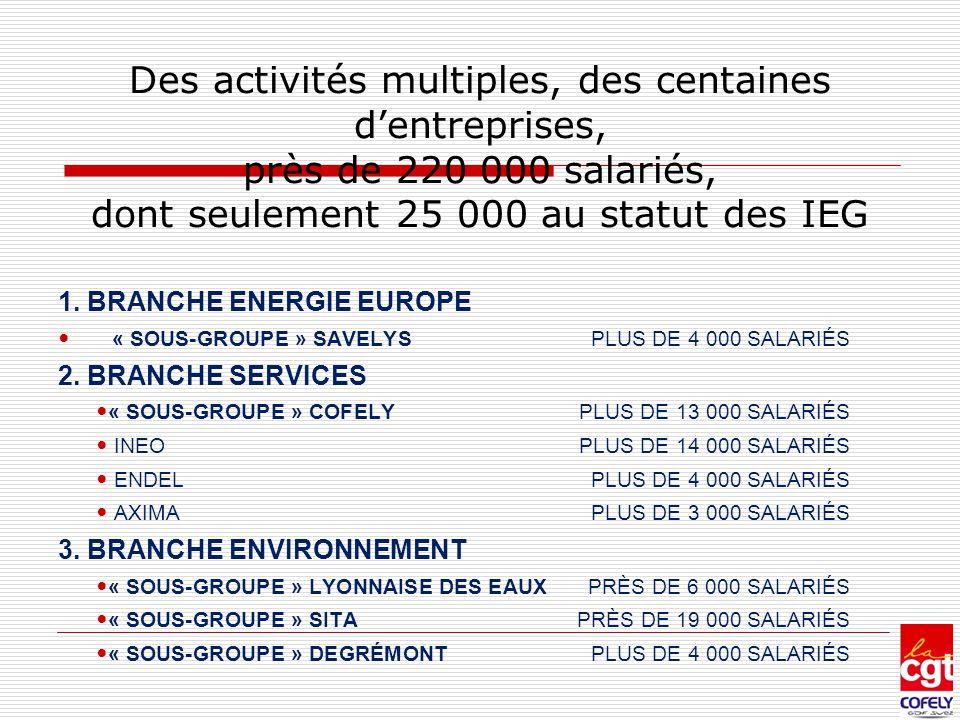 Des activités multiples, des centaines d'entreprises, près de 220 000 salariés, dont seulement 25 000 au statut des IEG