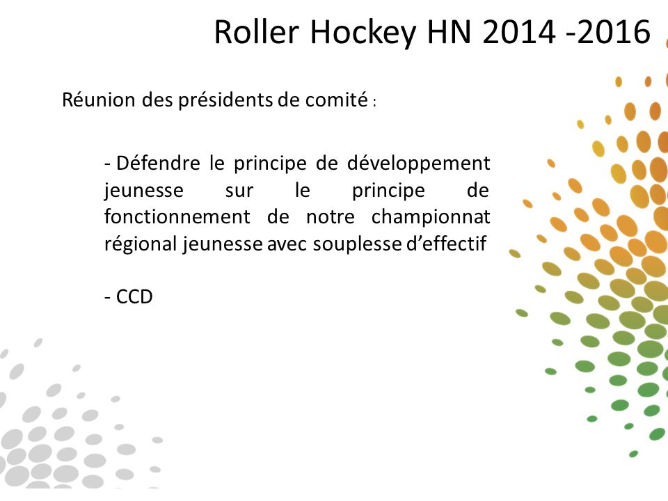 Roller Hockey HN 2014 -2016 Réunion des présidents de comité :