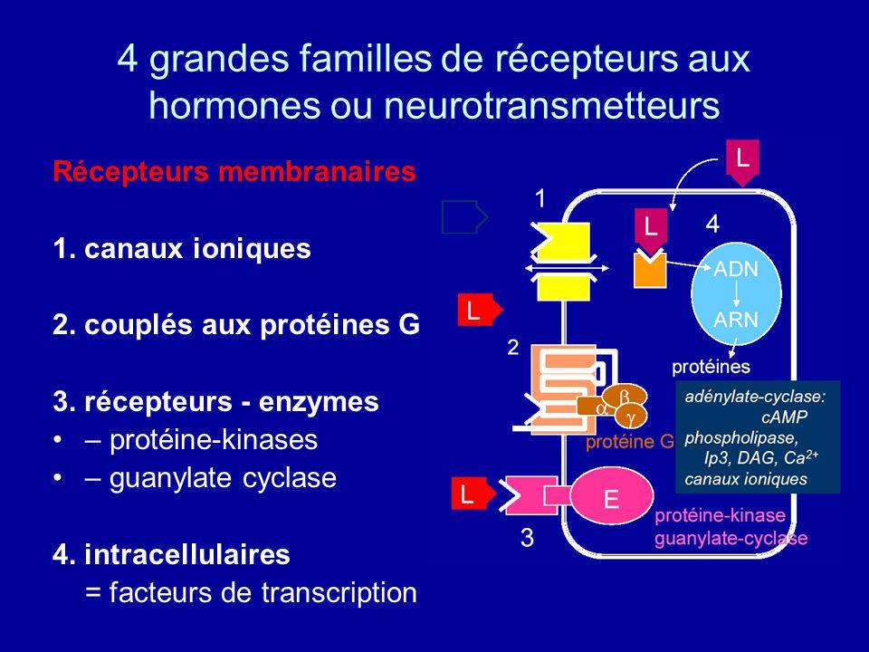 4 grandes familles de récepteurs aux hormones ou neurotransmetteurs