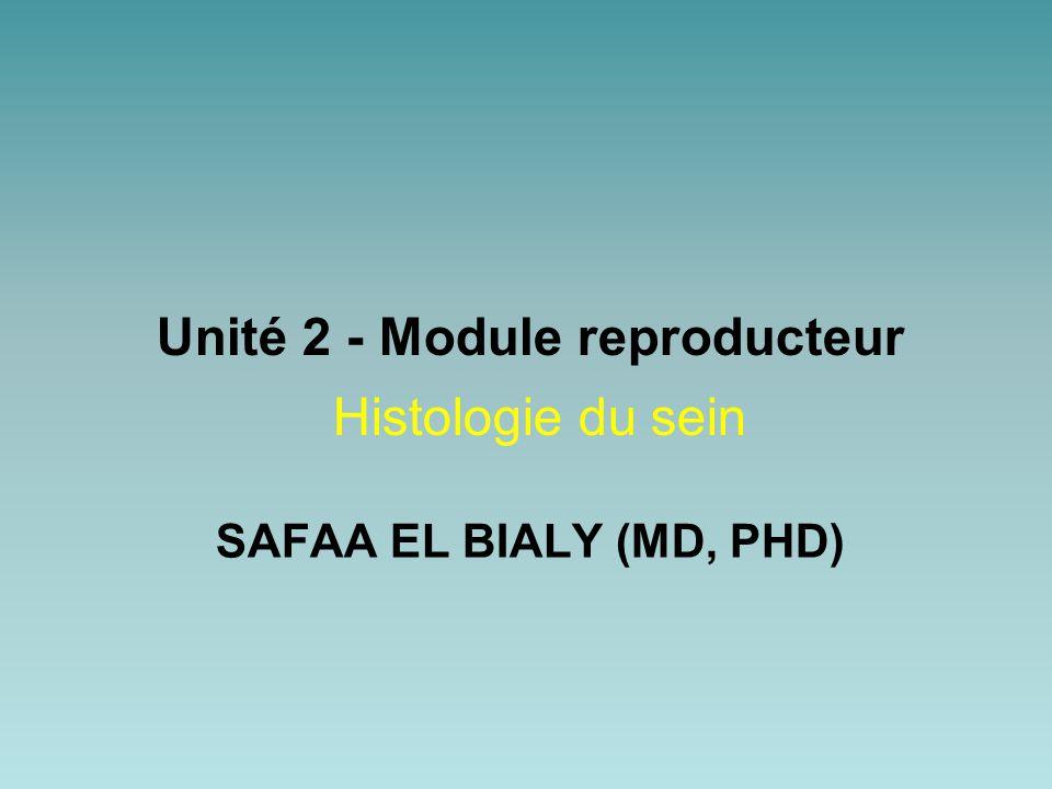Unité 2 - Module reproducteur Histologie du sein