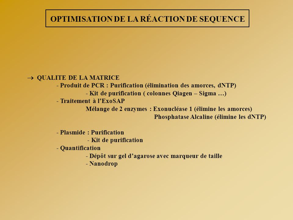 OPTIMISATION DE LA RÉACTION DE SEQUENCE