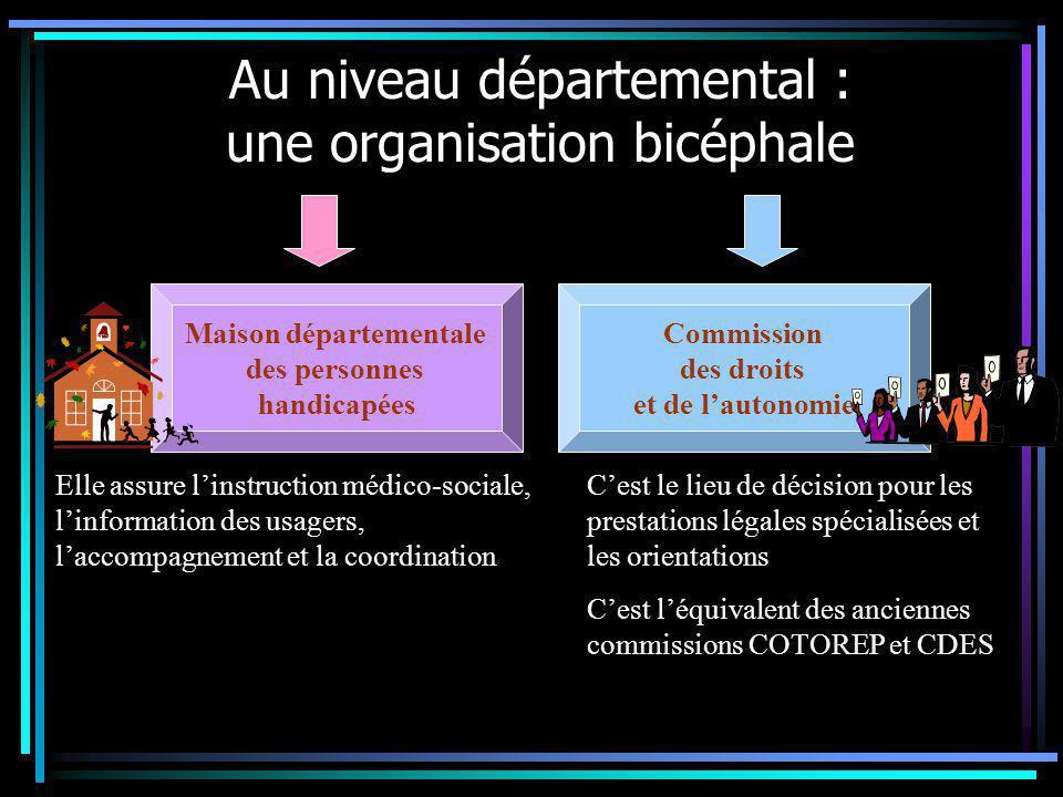 Au niveau départemental : une organisation bicéphale