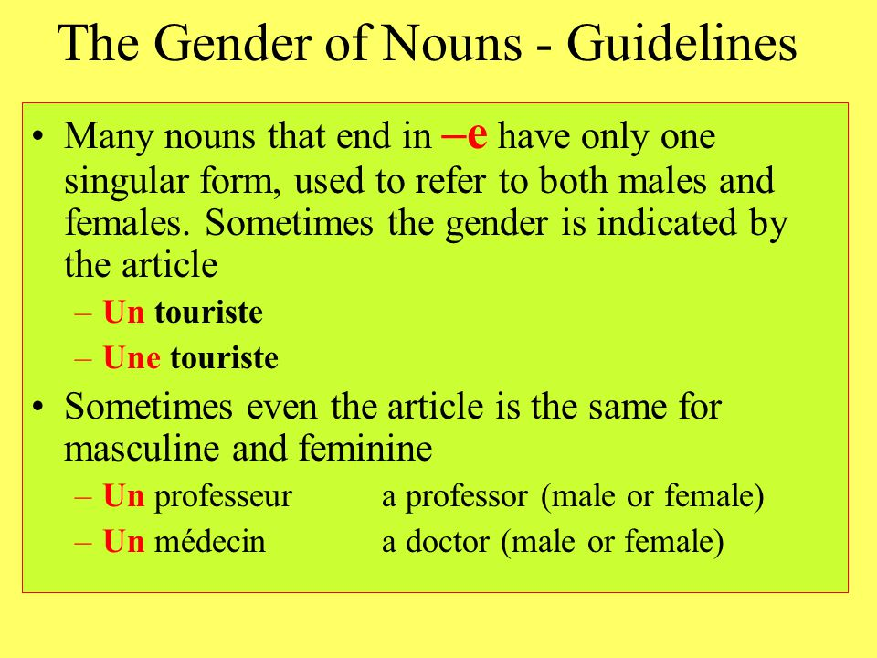 The Gender of Nouns - Guidelines