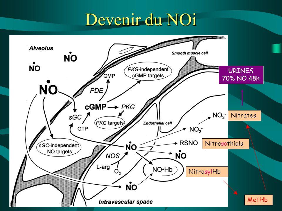 Devenir du NOi URINES 70% NO 48h Nitrates Nitrosothiols NitrosylHb