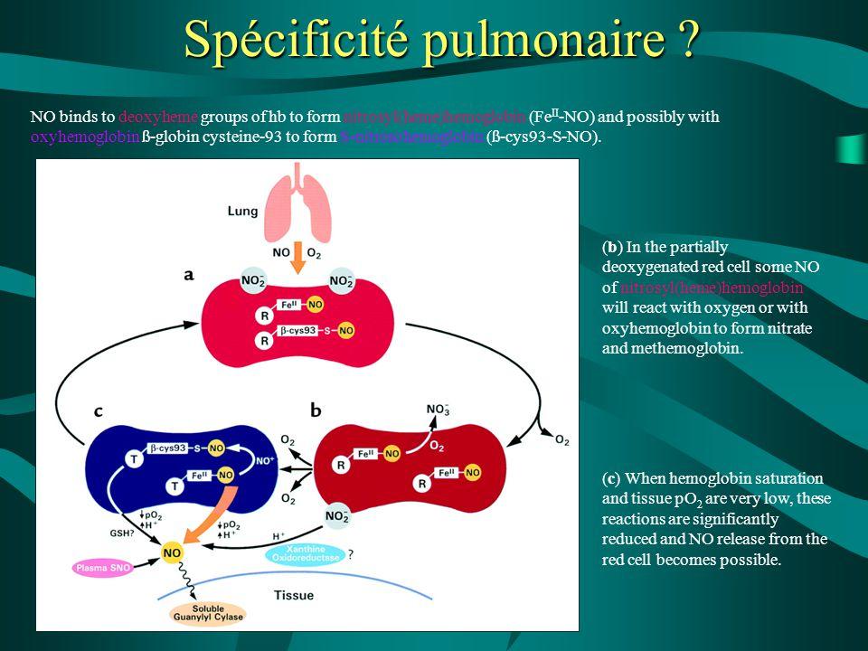 Spécificité pulmonaire
