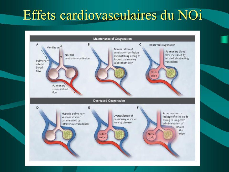 Effets cardiovasculaires du NOi