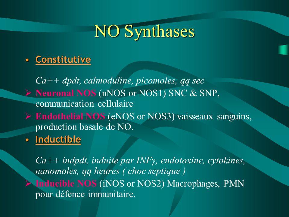NO Synthases Constitutive Ca++ dpdt, calmoduline, picomoles, qq sec