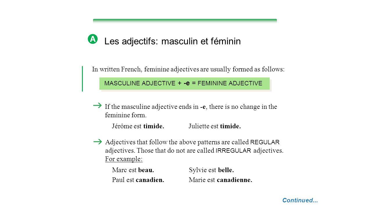 Les adjectifs: masculin et féminin