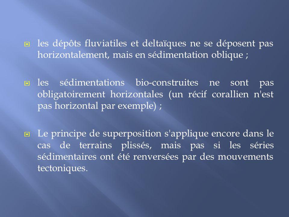 les dépôts fluviatiles et deltaïques ne se déposent pas horizontalement, mais en sédimentation oblique ;