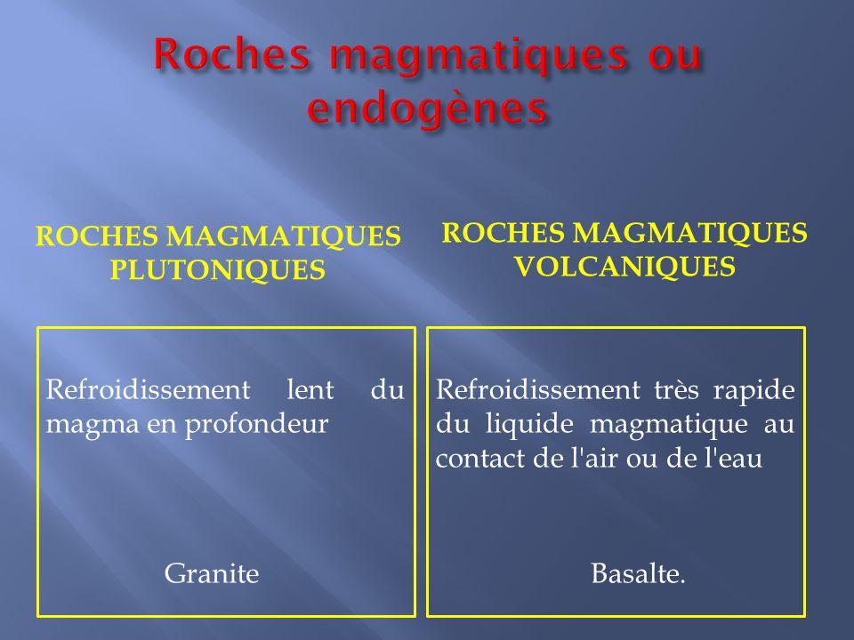 Roches magmatiques ou endogènes