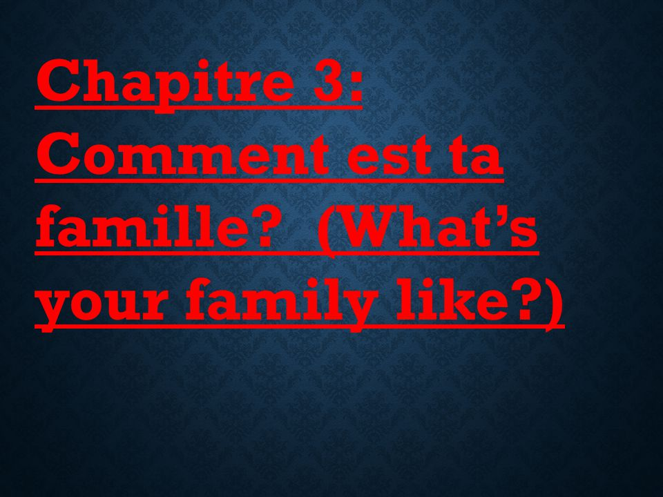 Chapitre 3: Comment est ta famille (What's your family like )