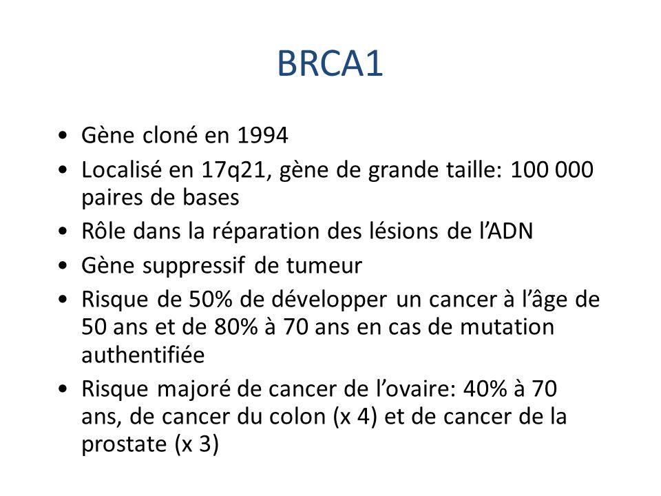 BRCA1 Gène cloné en 1994. Localisé en 17q21, gène de grande taille: 100 000 paires de bases. Rôle dans la réparation des lésions de l'ADN.