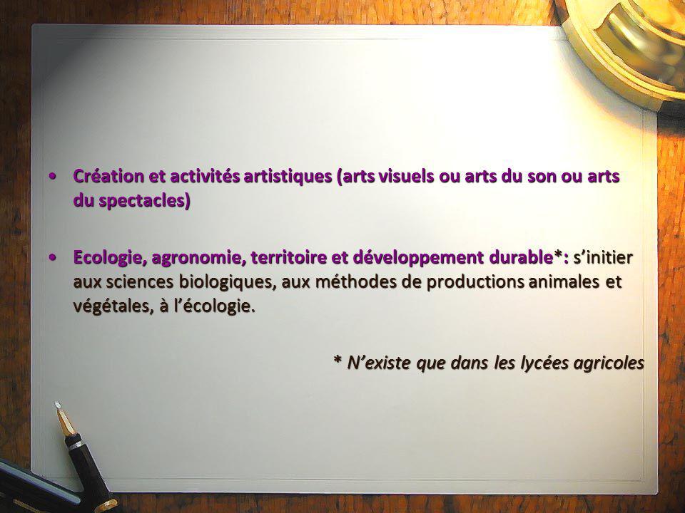 Création et activités artistiques (arts visuels ou arts du son ou arts du spectacles)