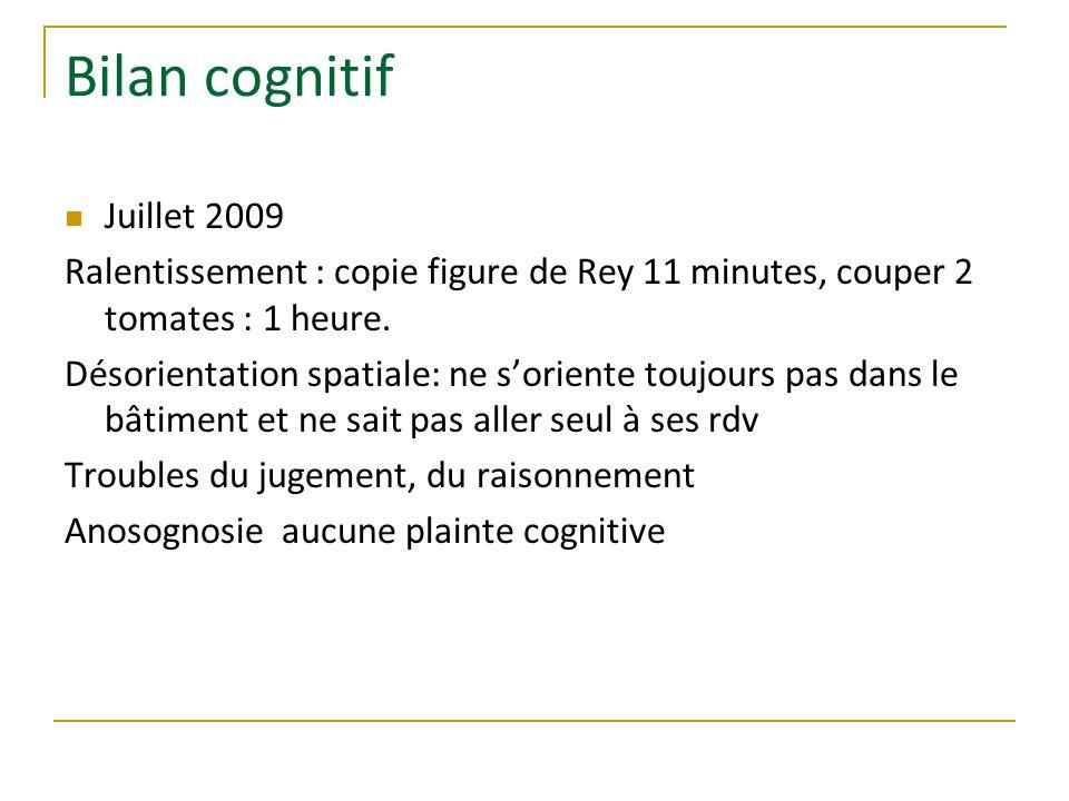 Bilan cognitif Juillet 2009