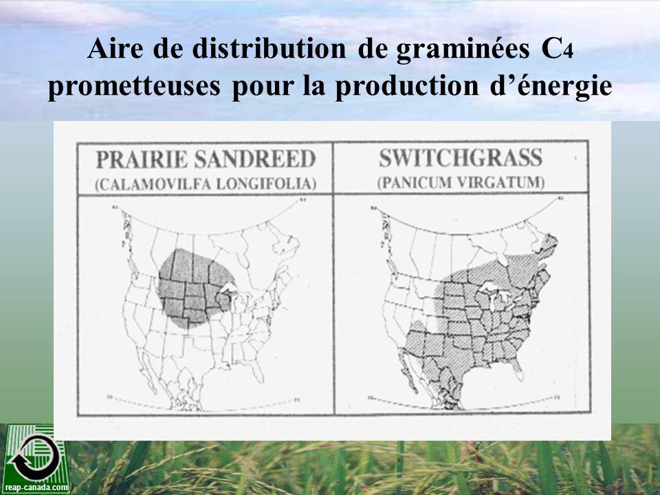 Aire de distribution de graminées C4 prometteuses pour la production d'énergie