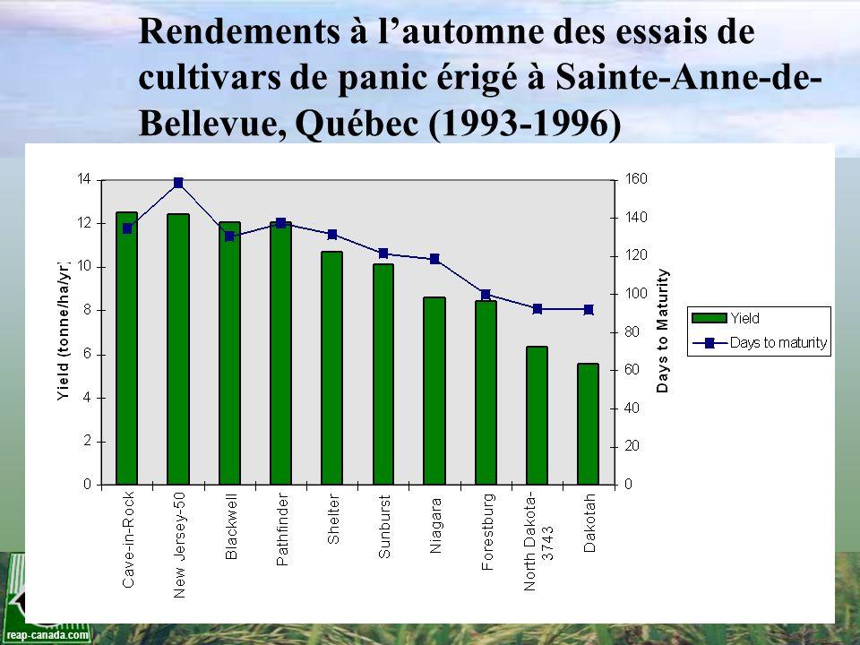 Rendements à l'automne des essais de cultivars de panic érigé à Sainte-Anne-de-Bellevue, Québec (1993-1996)