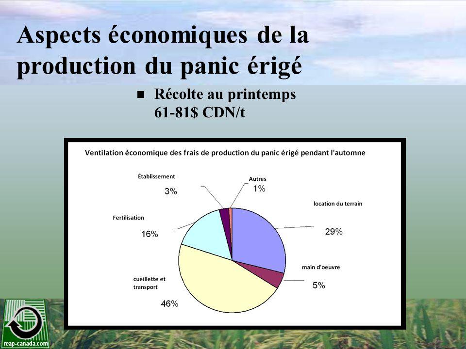 Aspects économiques de la production du panic érigé