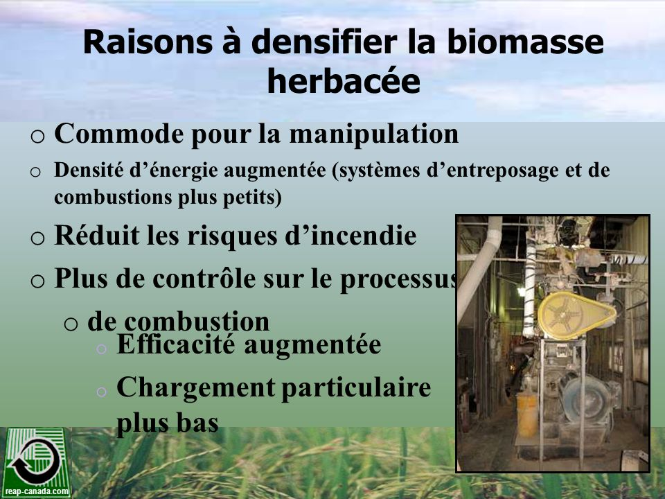 Raisons à densifier la biomasse herbacée