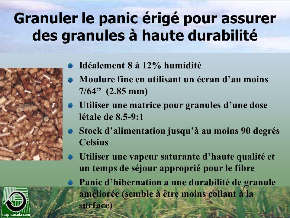 Granuler le panic érigé pour assurer des granules à haute durabilité