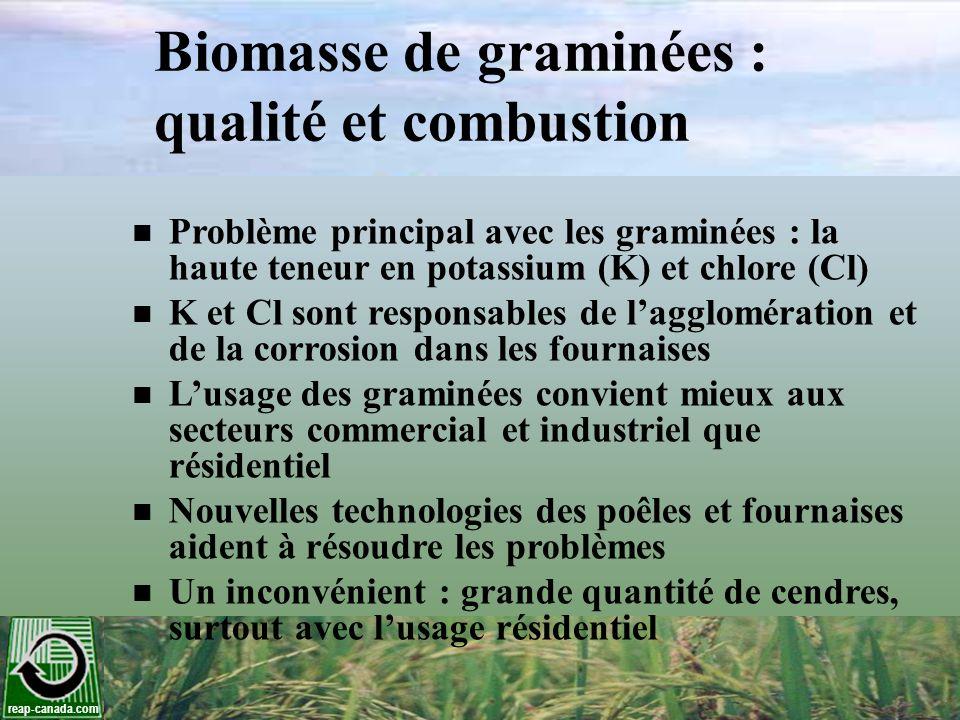 Biomasse de graminées : qualité et combustion