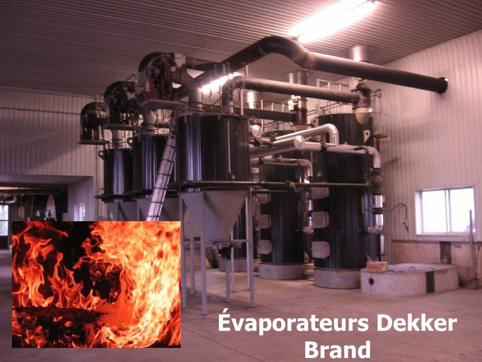 Évaporateurs Dekker Brand