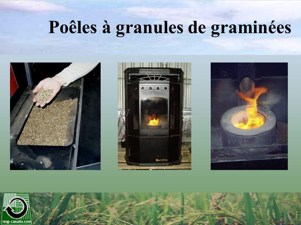 Poêles à granules de graminées