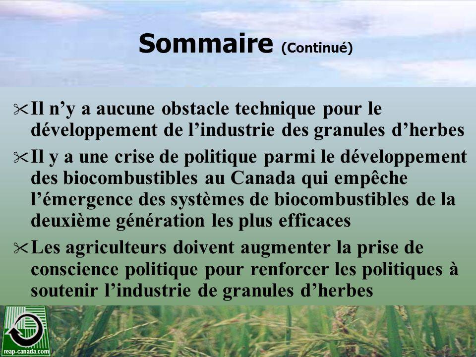 Sommaire (Continué) Il n'y a aucune obstacle technique pour le développement de l'industrie des granules d'herbes.