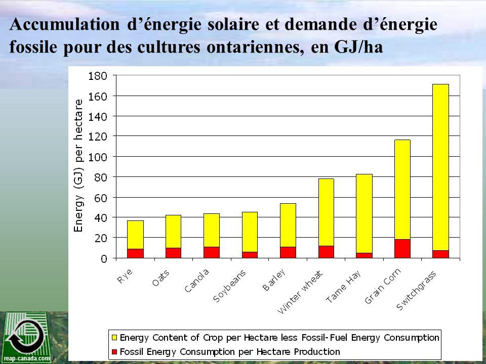 Accumulation d'énergie solaire et demande d'énergie fossile pour des cultures ontariennes, en GJ/ha
